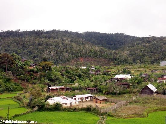 andasibe village- (Andasibe)