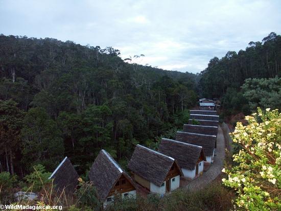 Feon'ala lodge (Andasibe)