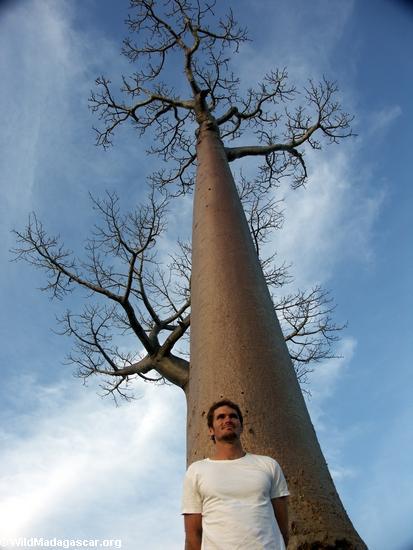 Rhett with baobabs (Morondava) [baobabs0116a]
