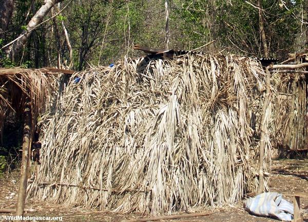 Sakalava leaf hut (Tsingy de Bemaraha)