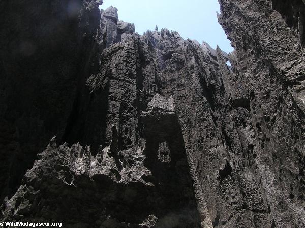 Limestone tsingy (Tsingy de Bemaraha) [tsingy_9]