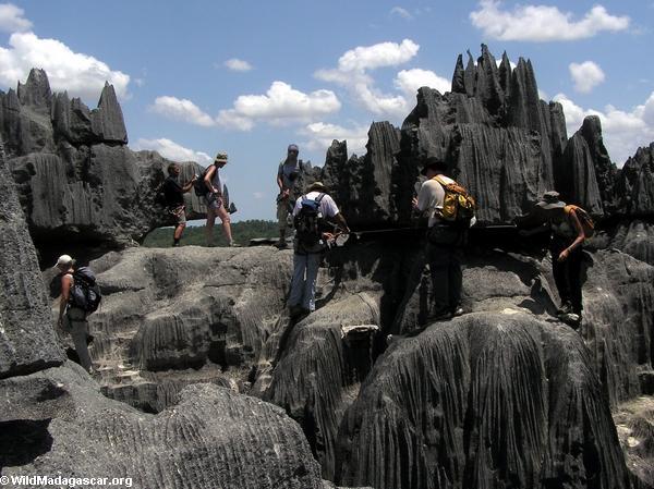 Tourists at Tsingy de Bemaraha (Tsingy de Bemaraha)