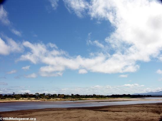 Berenty river(Berenty)