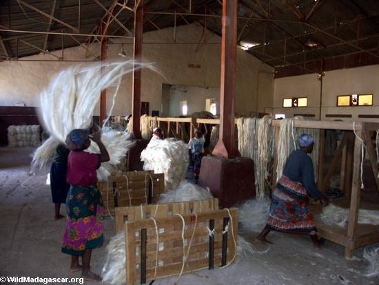 Andranobory sisal workers(Berenty)