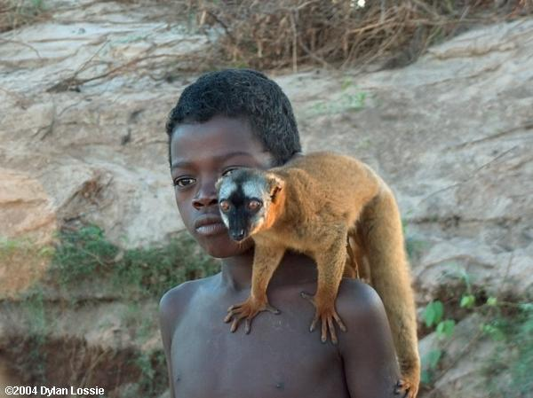 Tsiribihina River Boy with Lemur (Tsiribihina River Boy with Lemur)