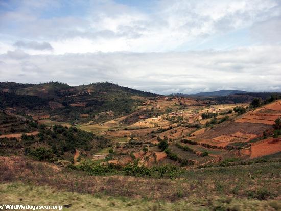 Deforestation in Madagascar (RN7)