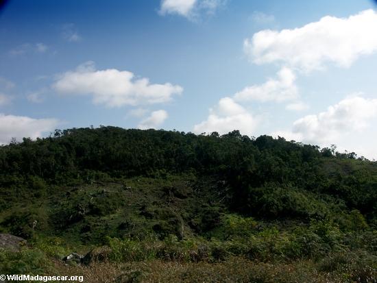 Tavy deforestation (Ifasina / Antoetra)