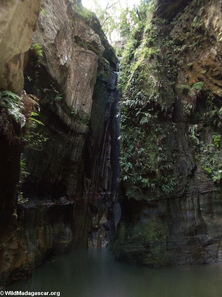 Canyon des rats in Isalo NP (Isalo) [canyon_des_rats018]