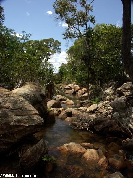 Canyon des rats in Isalo NP (Isalo) [canyon_des_rats_0106]