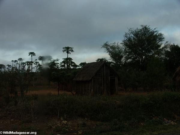 Roadside hut (Isalo)