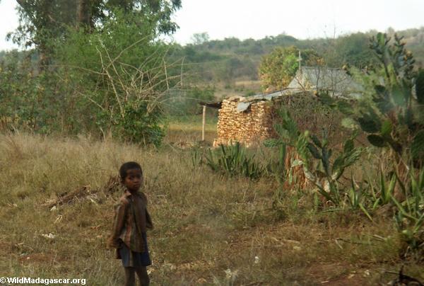 Child along road to Isalo (Isalo)