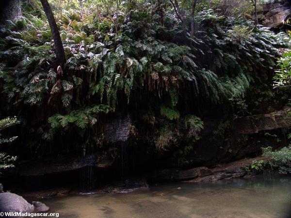 Ranohira Falls (Isalo)