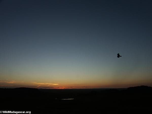 Sunrise over Isalo National Park (Isalo)