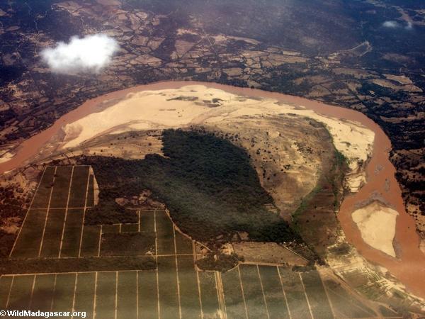 Aerial view of Berenty area (Berenty)