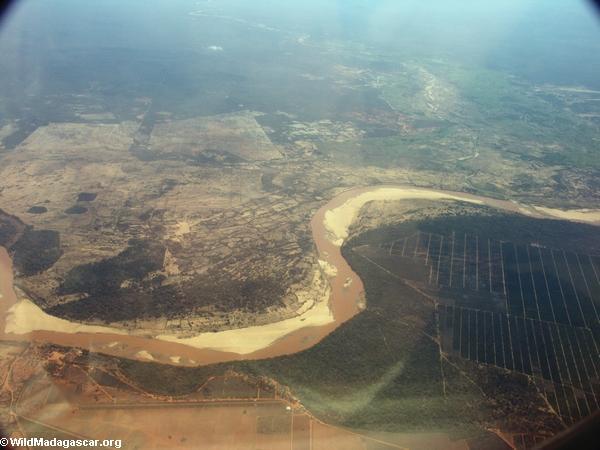 Aerial view of Berenty sisal plantation area (Berenty)