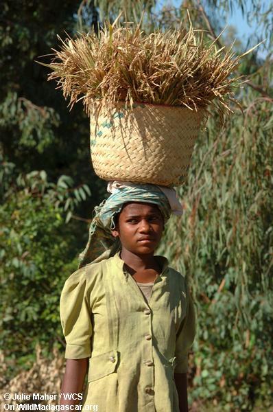 Madagassische Frau mit Korb auf ihrem Kopf