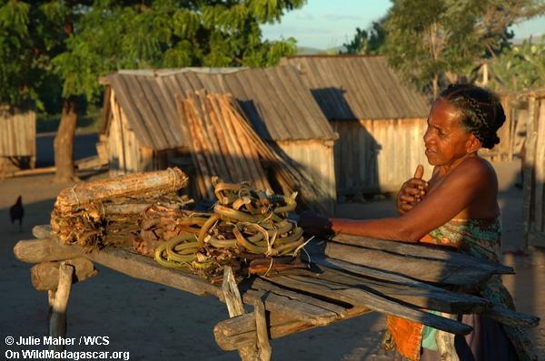 Frau, die Frucht verkauft