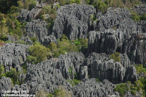 Tsingy de Bemaraha ariel