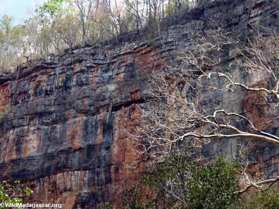 canyon wall (Manambolo)