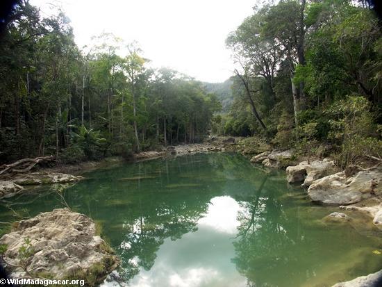 Oly canyon pool (Manambolo)