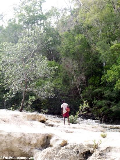 Guide Betsara walking up Oly Canyon stream(Manambolo)