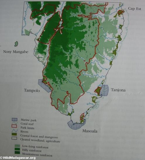 Карта растительности masoala Н.П.