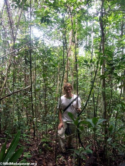 Rhett in Masoala rainforest