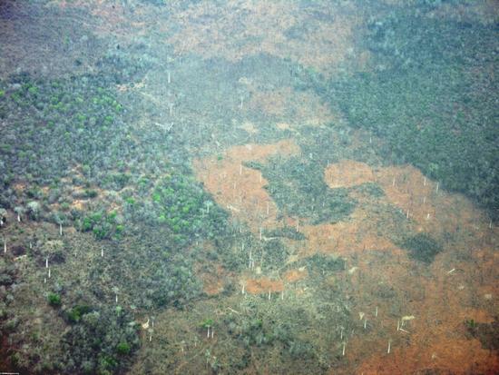 Aerial view of deforestation in western Madagascar (Tulear)