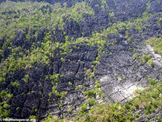 Aerial view of limestone formations in Tsingy de Bemaraha (Tsingy de Bemaraha)
