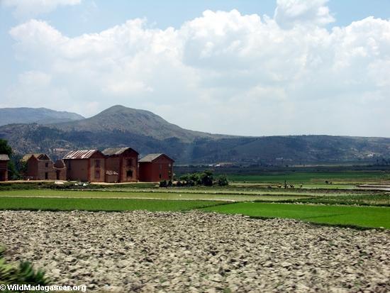 Rice fields of Malagasy highlands (RN7) [tana-rano_0099]