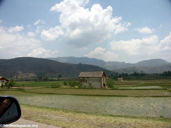 Rice fields of Malagasy highlands (RN7) [tana-rano_0106]