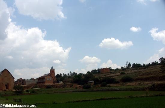 Rice fields of Malagasy highlands (RN7) [tana-rano_0127]