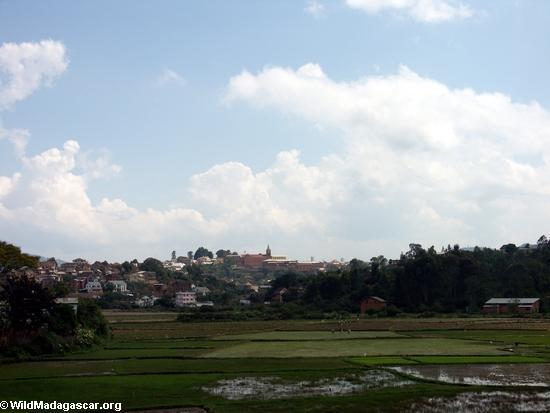 Rice fields of Malagasy highlands (RN7) [tana-rano_0180]