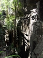 tsingy canyon (Tsingy de Bemaraha)