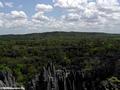 tsingy landscape (Tsingy de Bemaraha)