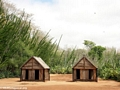 Sample huts of the Antandroy (Berenty)