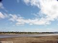 Berenty ('Big Eel') river (Berenty)