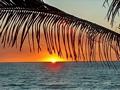 Morondava sunset (Morondava)