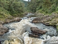 Ranomafana river  (Ranomafana )