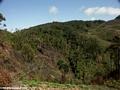 Tavy deforestation (Ifasina / Antoetra) [ifasina0172]