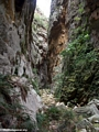 Canyon des rats in Isalo NP (Isalo)