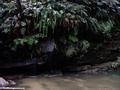 Ranohira Falls (Isalo) [isalo_singes0118]