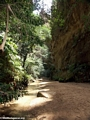 Canyon des Singes in Isalo NP (Isalo)