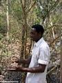 Gregoire tuber in hand (Kirindy)