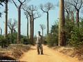 Rhett among baobabs (Kirindy)