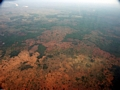 Aerial view of deforestation in western Madagascar (Tulear)