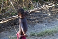 Boy along road in Morondava (Morondava)
