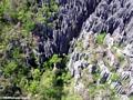 Aerial view of limestone Tsingy (Tsingy de Bemaraha)