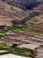 Terraced rice fields of Madagascar (RN7)