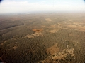 Aerial view of dry forest (Fort Dauphin - Tana Flight) [ftdaph-tana_flight0052]